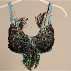 Peacock Dance Bra