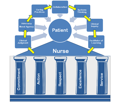 Thompson Hospital's nursing Professional Practice Model, Synergy, directly correlates with the advancement level of our nursing staff